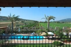 Azienda vitivinicola in produzione