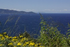 Cottage on the west coast of the Argentario, wonderful sea view. 6/7 beds