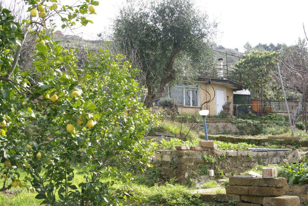 Piccola casa di campagna con lastrico solare ombreggiato - Giardino di campagna ...