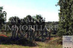 Vendita casale con annesso in costruzione, 6,9 ha terreno, PMAA. Capalbio – Maremma