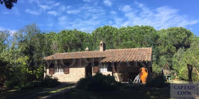 villa in pietra in Feniglia 1