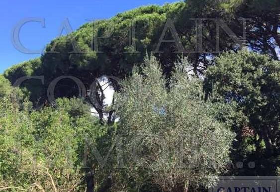 villa in pietra in Feniglia 15