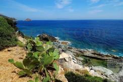 Villa con piscina naturale e spiaggia privata. Porto S. Stefano Argentario 10/11 ospiti