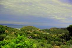 Vendesi villa con stupenda vista mare, in collina. Porto Ercole