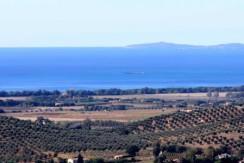 Vendita di progetto per costruire casale e annessi per 1.200 mq su terreno di 13 ha. Capalbio