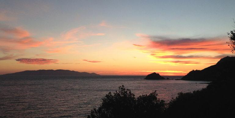 1f. garden Sunset