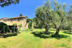 Vendita antico casale in pietra con piscina e giardino. Orbetello