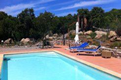 """Affitto """"Villa Costanza"""", giardino 3.000mq, piscina, Ansedonia"""