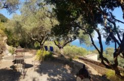Affitto casale Oliveto, Cala Cacciarella, splendida vista sul mare e sulle isole.