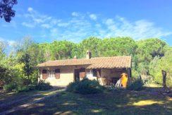 Vendita villa indipendente nella pineta di Feniglia.
