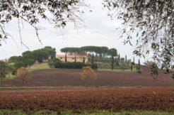 Vendita azienda agricola con 52 ha terreno, posizione centrale fra il mare e il paese.