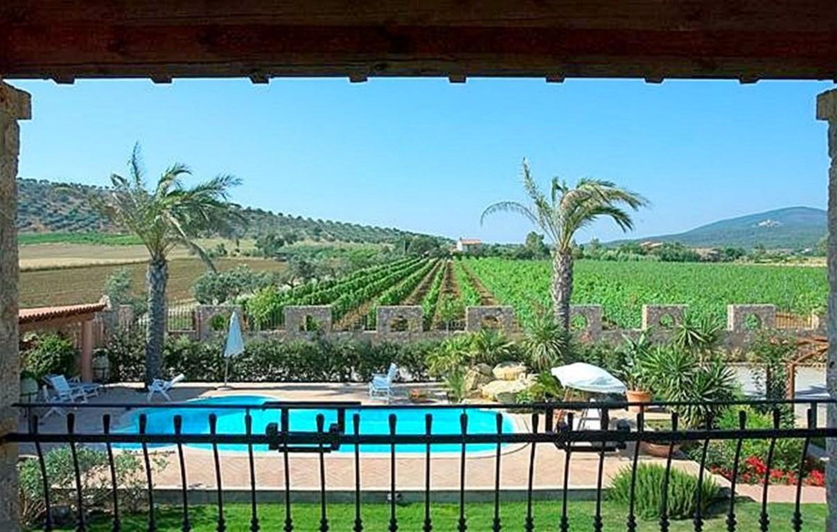 Vendita azienda vitivinicola in produzione, Capalbio