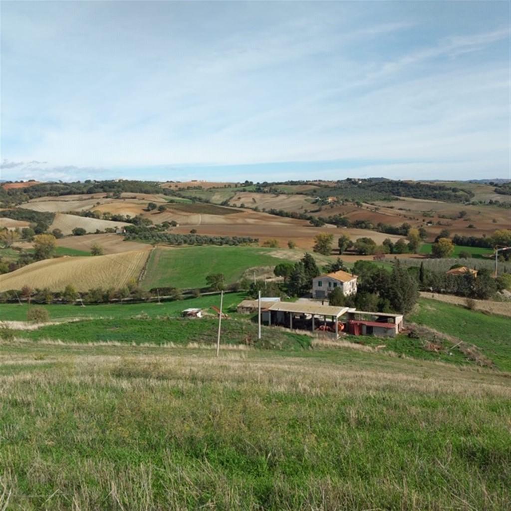 Vendita casale ex Ente Maremma con terreno, zona collinare e panoramica.